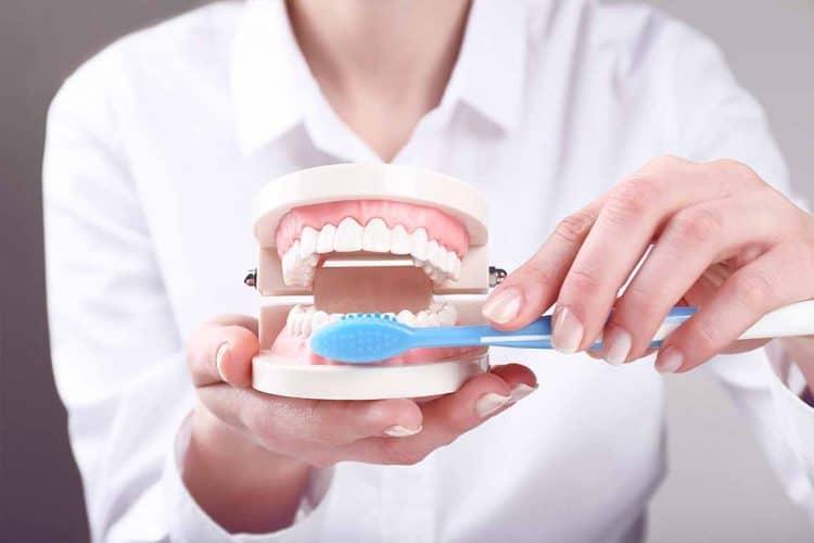 toothbrushing photo